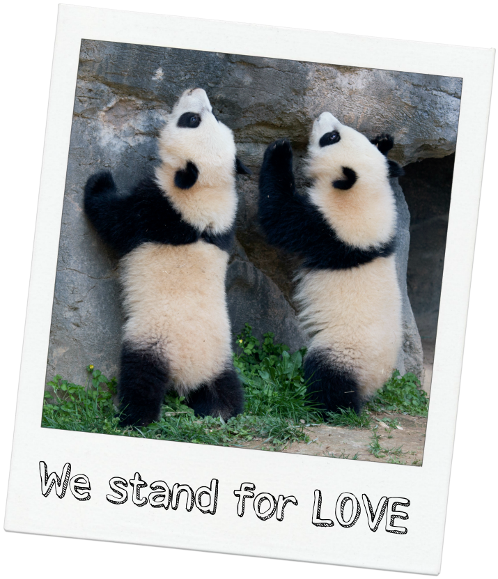 We Stand For Love
